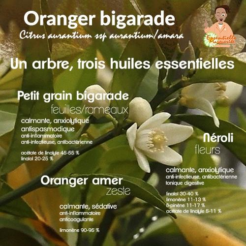 Essentielle Marguerite - Oranger bigarade