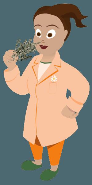 Marguerite et le thym