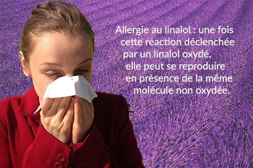 Le linalol, déclencheur d'allergies et d'eczéma