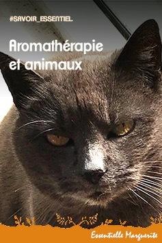 Aromathérapie et animaux