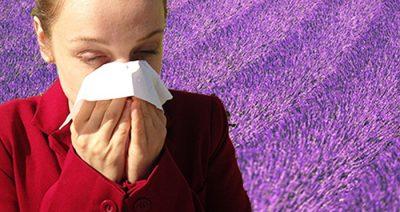 Linalol allergies et eczéma
