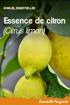 Essence de citron