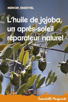 L'huile de jojoba, un après-soleil réparateur naturel