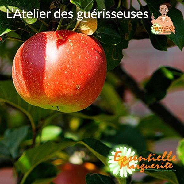 La pomme et les verrues