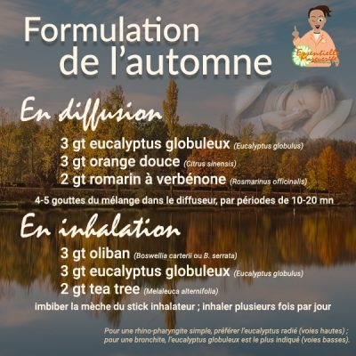 Synergie d'automne 2