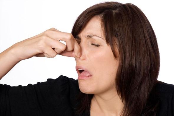 Les mauvaises odeurs ont un rôle