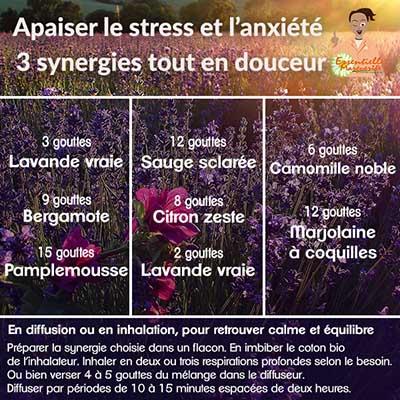 HE stress et anxiété